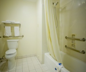 Well Appointed Accessible Bathroom