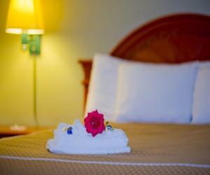 Queen Room - Redwood City Hotels